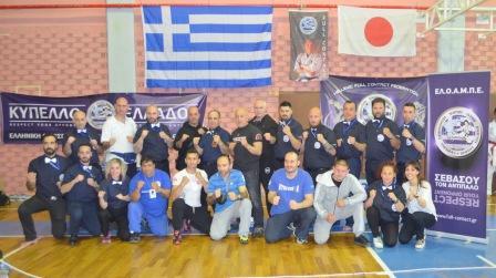 Κύπελλο Ελλάδος full contact
