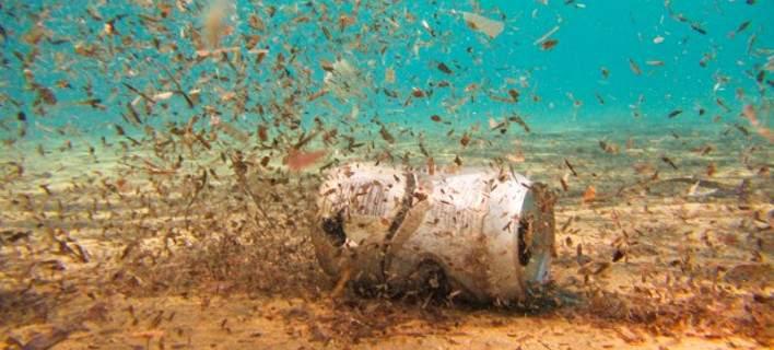 Νανορομπότ: Οι υποβρύχιοι «μαχητές» που θα καθαρίσουν τις μολυσμένες θάλασσες