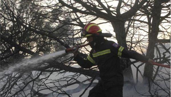 Τεράστιες καταστροφές απο τη μεγάλη πυρκαγιά στην Ιεράπετρας Λασιθίου