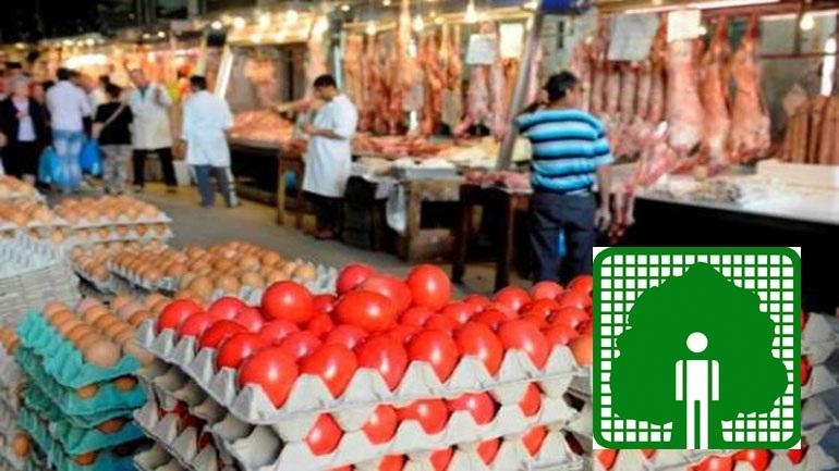 Έρευνα ΠΑΚΟΕ στην αγορά: Αμφιβόλου προελεύσεως το 50% των αμνοεριφίων