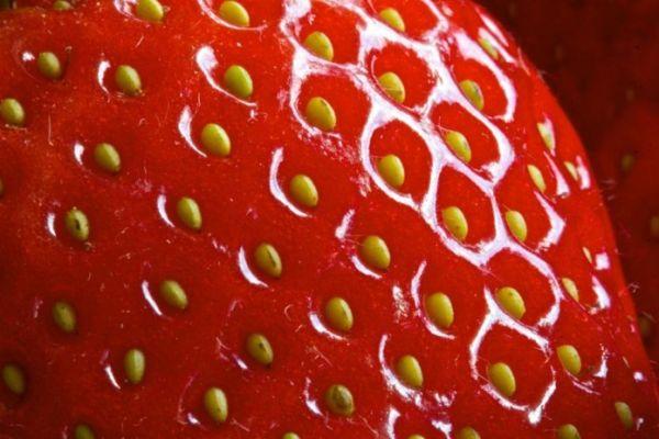 Τα 12 πιο «βρώμικα» φρούτα και λαχανικά του 2016 (και τα 15 πιο «καθαρά»)