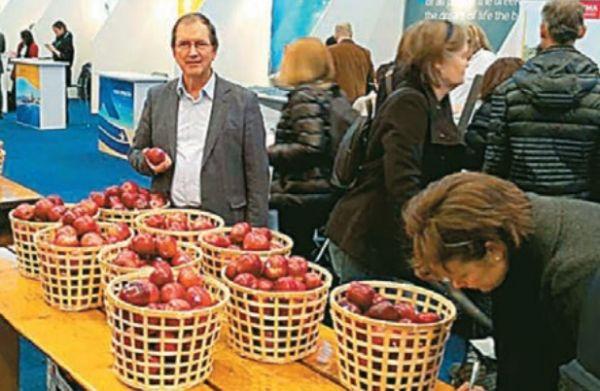 Τα πρώτα ΠΟΠ μήλα της Ευρώπης από το ΖΑΓΟΡΙΝ