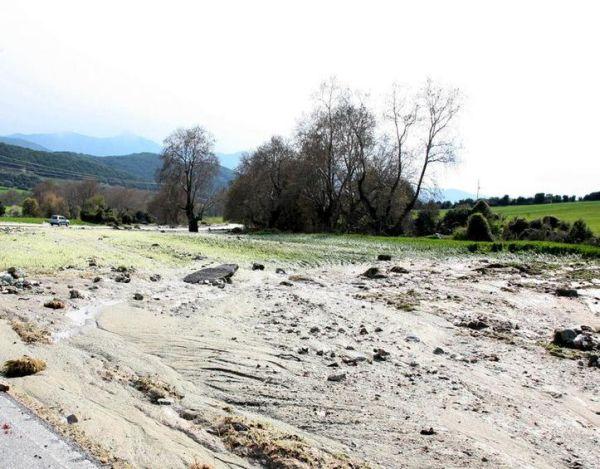 Κλιμάκιο του ΕΛΓΑ στα Φάρσαλα για την καταγραφή ζημιών σε καλλιέργειες