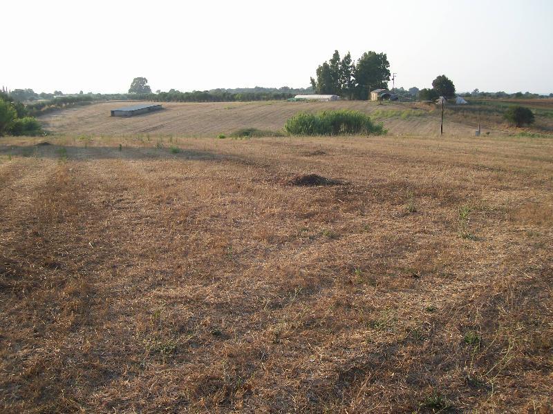Δημοπρασία για την αγορά γης από το δήμο