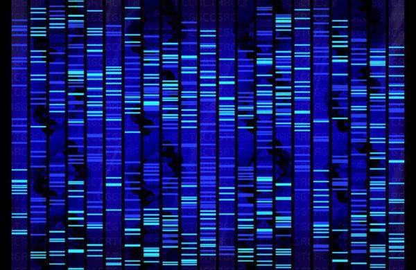 Εγκαινιάστηκε η πρώτη Μονάδα Ανάλυσης Αρχαίου DNA στην Ελλάδα