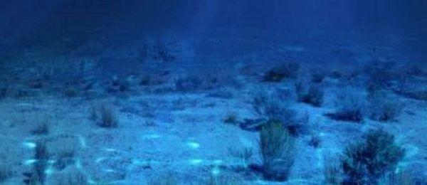 Ο βυθός της θάλασσας είναι λιγότερο γνωστός από το σεληνιακό έδαφος