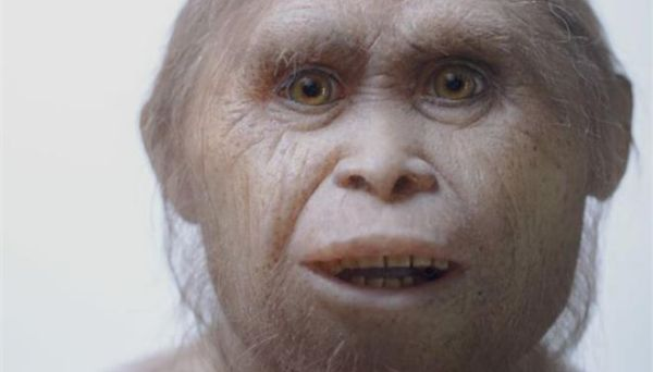 Ανακαλύφθηκαν οι πρόγονοι των «Χόμπιτ»