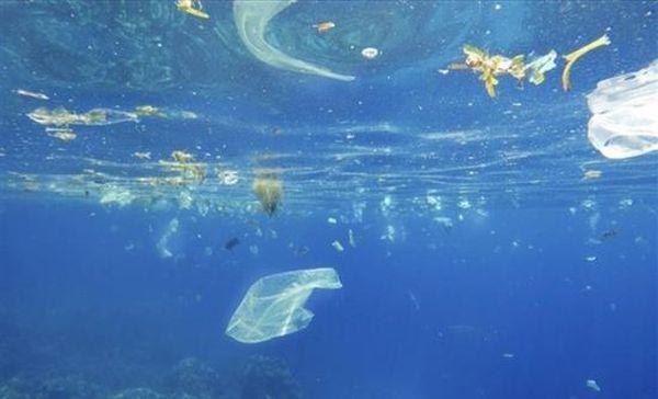 Τα μικροπλαστικά στον ωκεανό σκοτώνουν τα ψάρια γρηγορότερα από ό,τι αναπαράγονται