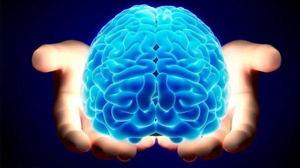 Πώς αντιδρά ο ανδρικός εγκέφαλος στη ... συνεργασία