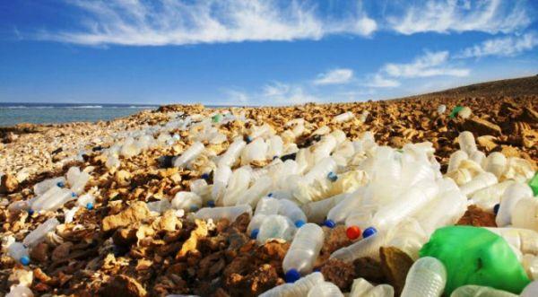 Ογκοι πλαστικών και αποτσίγαρων μαζεύτηκαν από την ακτή στην ΑΓΕΤ