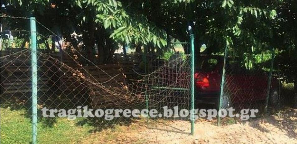 Αρκούδα μπήκε στην αυλή σπιτιού στην Καστοριά