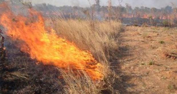 Χάνουν ενισχύσεις του ΟΠΕΚΕΠΕ αγρότες που καίνε καλαμιές