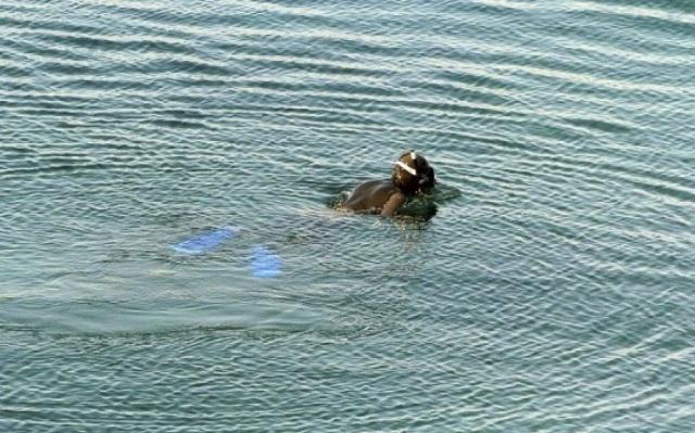 Ψάρευε στις Νηές χρησιμοποιώντας χλωρίνη
