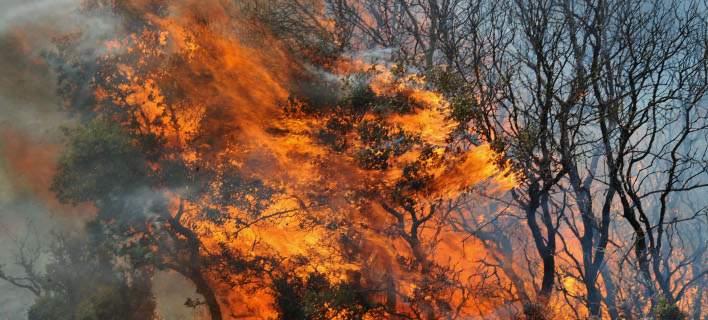 Πυρκαγιά σε αγροτική έκταση στη Βρύναινα Αλμυρού