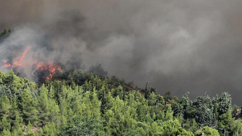 Σε ύφεση η φωτιά στη Λίμνη Ευβοίας, στάχτη χιλιάδες στρέμματα δάσους