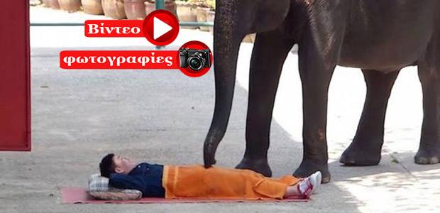 Μασάζ από ελέφαντες στη Ταϊλανδή