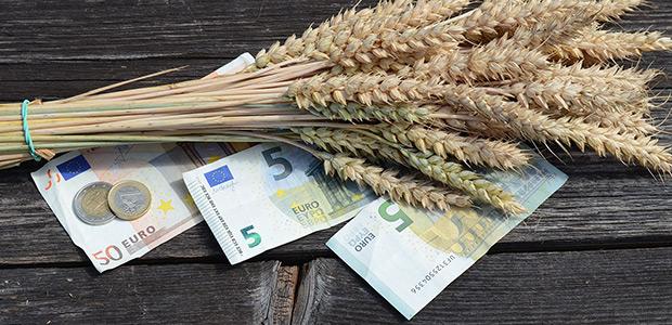 Αποζημιώσεις 533.933 ευρώ στη Μαγνησία από τον ΕΛΓΑ