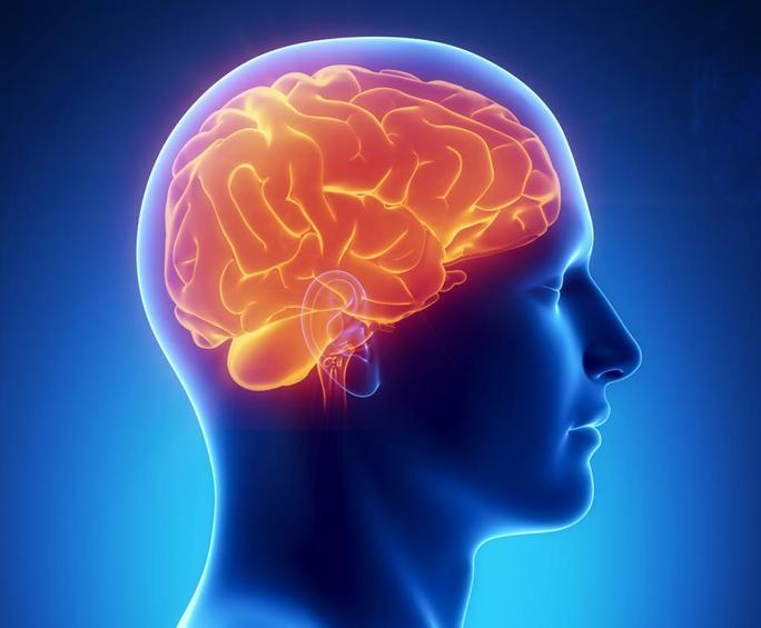 Επιστήμονες βρήκαν το κέντρο της γενναιοδωρίας στον εγκέφαλο
