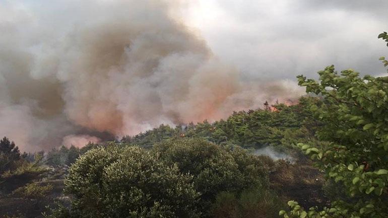 Σε εξέλιξη η πυρκαγιά στην Καλαμπάκα
