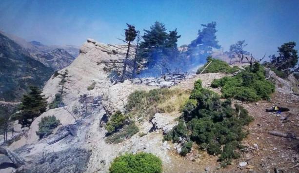 Καίγεται το δάσος στο Μέγα Σπήλαιο στα Καλάβρυτα