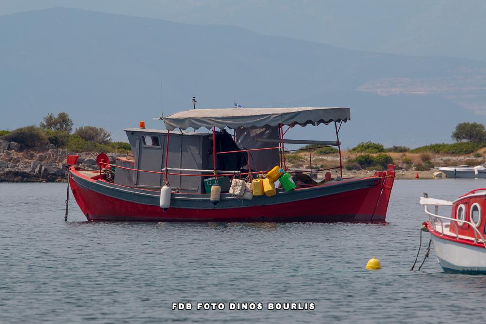 Αιτήσεις για χορήγηση άδειας αλιείας μεγάλων πελαγικών ψαριών