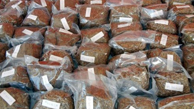 Σύλληψη 45χρονου για κατοχή μισού κιλού λαθραίου καπνού