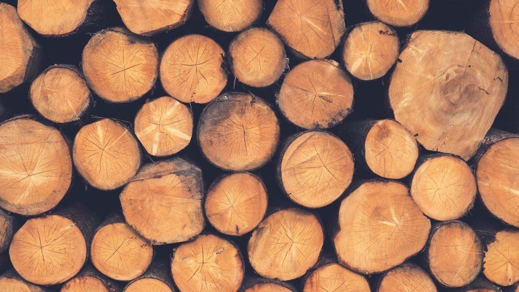 Σε άπορους η ξυλεία δένδρων που κόβονται από τον Δήμο Καρδίτσας