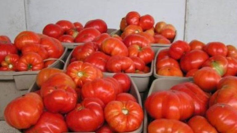 Δεσμεύτηκαν 1.900 κιλά ντομάτας άγνωστης προέλευσης