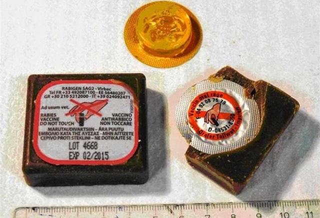Προειδοποιήσεις για ρίψεις εμβολίων από αέρα για τη λύσσα