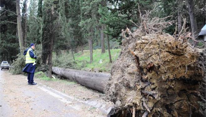 Σφοδροί άνεμοι σαρώνουν τη βορειοδυτική Γαλλία