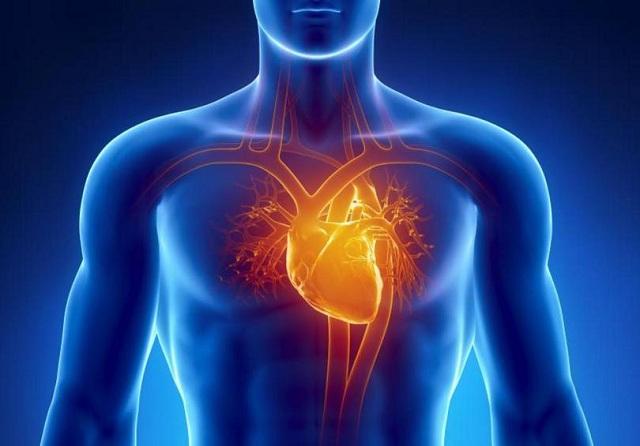 Η καρδιά μπορεί να πάθει το δικό της Αλτσχάιμερ
