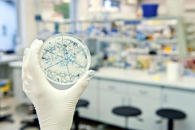 Δεν είναι όλα τα μικρόβια ...παθογόνα