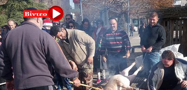 Αναβίωσε η γουρουνοχαρά στη πόλη της Λάρισας