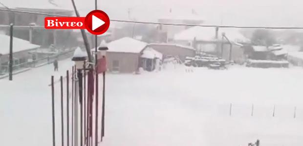 Καρδίτσα: Στους 50 πόντους το χιόνι στο Καλλίθηρο
