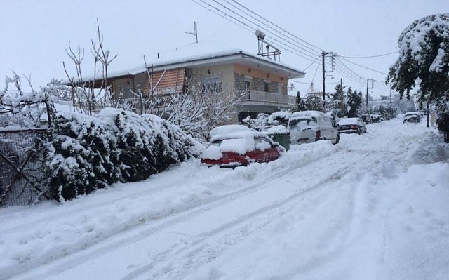 Σφοδρή χιονόπτωση από το πρωί στα Φάρσαλα προκάλεσε επιπλέον προβλήματα (Φωτό)