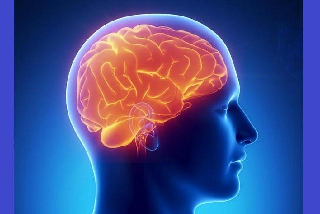 Οι ...κομπάρσοι του εγκεφάλου παίζουν πρωταγωνιστικό ρόλο σε Αλτσχάιμερ και άνοια