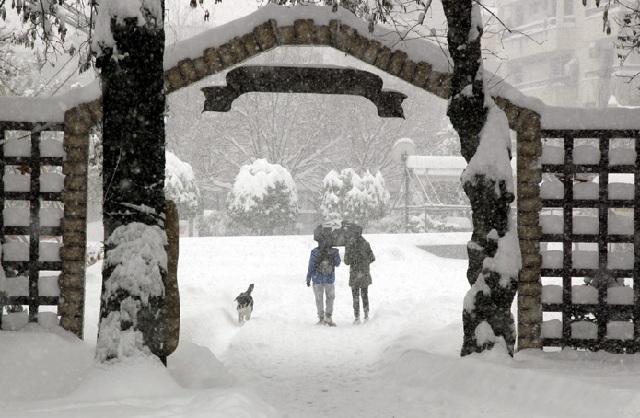 Προβλήματα από τον χιονιά σε Τρίκαλα και Καρδίτσα