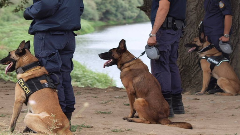 Ερχονται Γερμανοί αστυνομικοί για περιπολίες στα ελληνικά σύνορα!