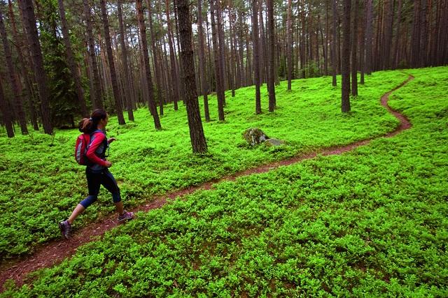 WWF: Πάνω από το 50% των φυσικών περιοχών της Ευρώπης προστατεύεται μόνο στα χαρτιά
