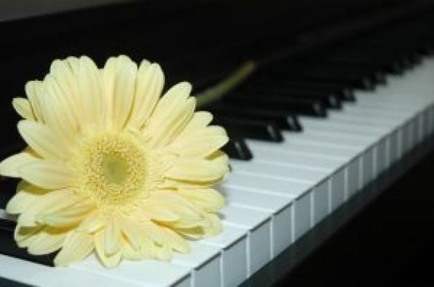 Ρεσιτάλ για δύο πιάνα