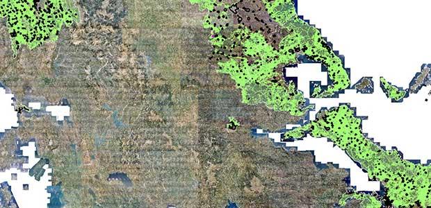 Χρήσιμες Πληροφορίες για το Δασικό Χάρτη στη Μαγνησία
