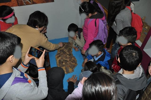 Προσφυγόπουλα μαθαίνουν για τους δεινόσαυρους στο Μουσείο Φυσικής Ιστορίας Βόλου