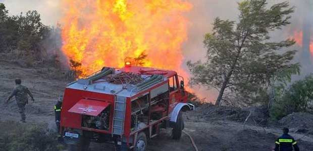 Η καύση κλαδιών «έβαλε» φωτιά σε δάσος της Σκοπέλου