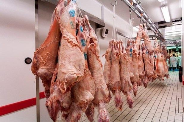 Αθρόες «ελληνοποιήσεις» αμνοεριφίων καταγγέλλουν οι Θεσσαλοί κτηνοτρόφοι