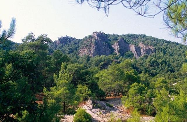 149.695 στρ. δημόσιας δασικής γης στη Μαγνησία επιδοτούνται ως αγροτική