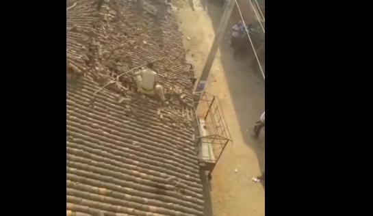Αστυνομικός πηδά από στέγη για να γλιτώσει από λεοπάρδαλη (βίντεο)