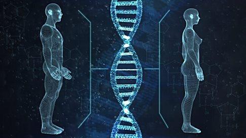 Εντοπίστηκαν γονίδια που είναι πιο «ανδρικά» ή πιο «γυναικεία»