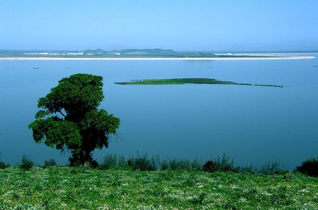 Συστάσεις για τήρηση περιβαλλοντικών όρων για την Κάρλα, απευθύνει ο Φορέας