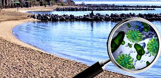 Εξαιρετικής ποιότητας το νερό στις ακτές της Μαγνησίας. Δείτε τις μετρήσεις σε 87 σημεία