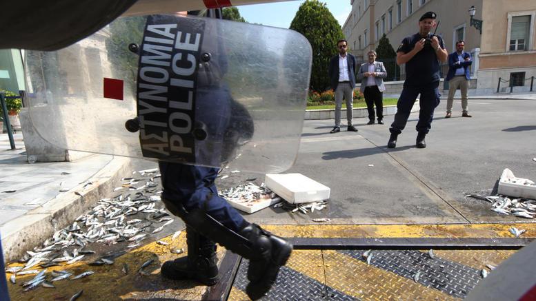 Διαδηλωτές πέταξαν σαρδέλες στο προαύλιο της Βουλής φωτό